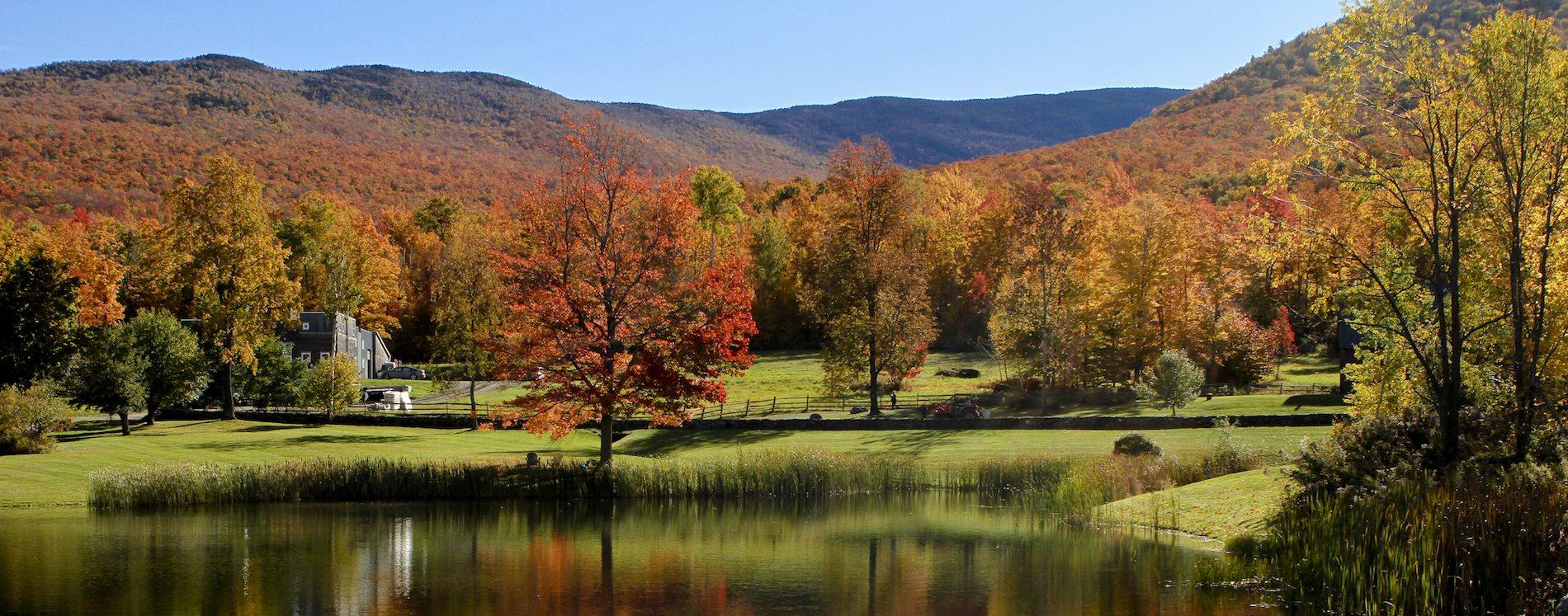 Runamok Maple Vermont view